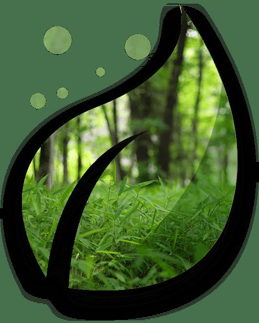 Eco Leaf 2